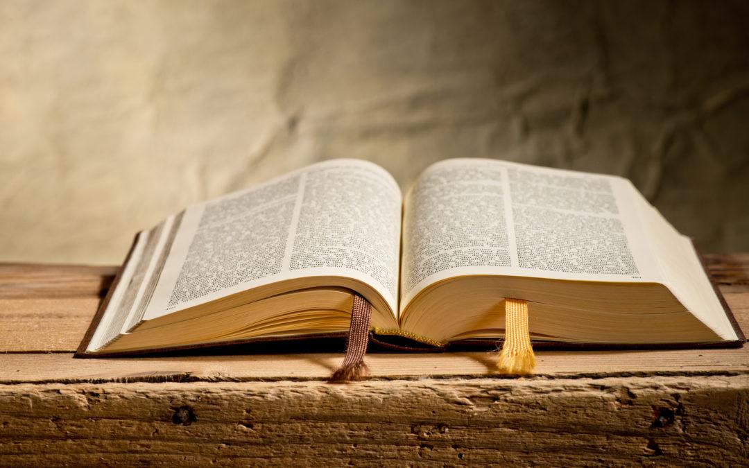 Krąg Biblijny – spotkania dorosłych nad Pismem Św.