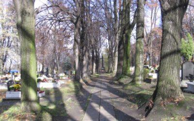 Cmentarz parafialny przy ul. Powstańców Śląskich