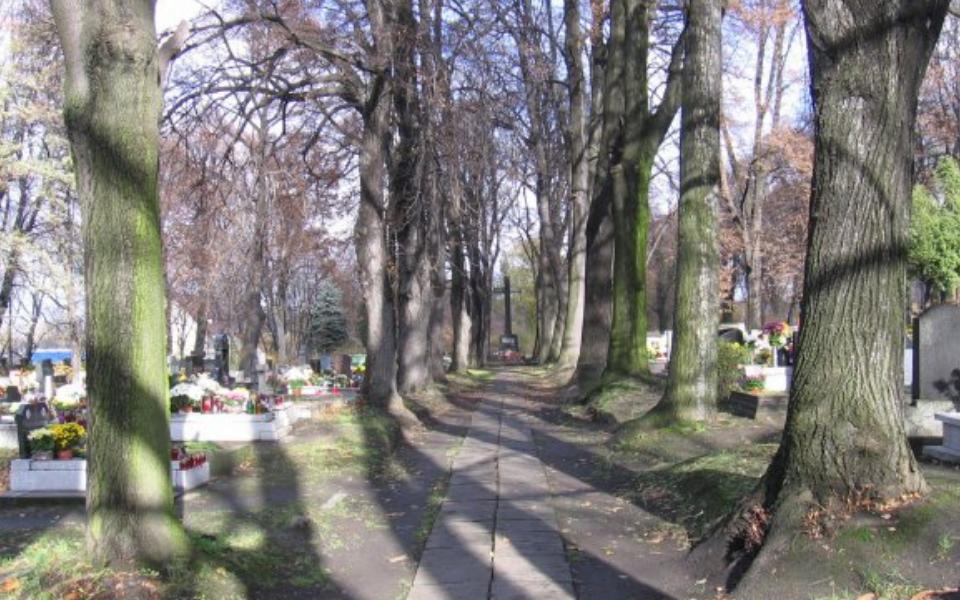 Cmentarz przy ul. Powstańców Śląskich